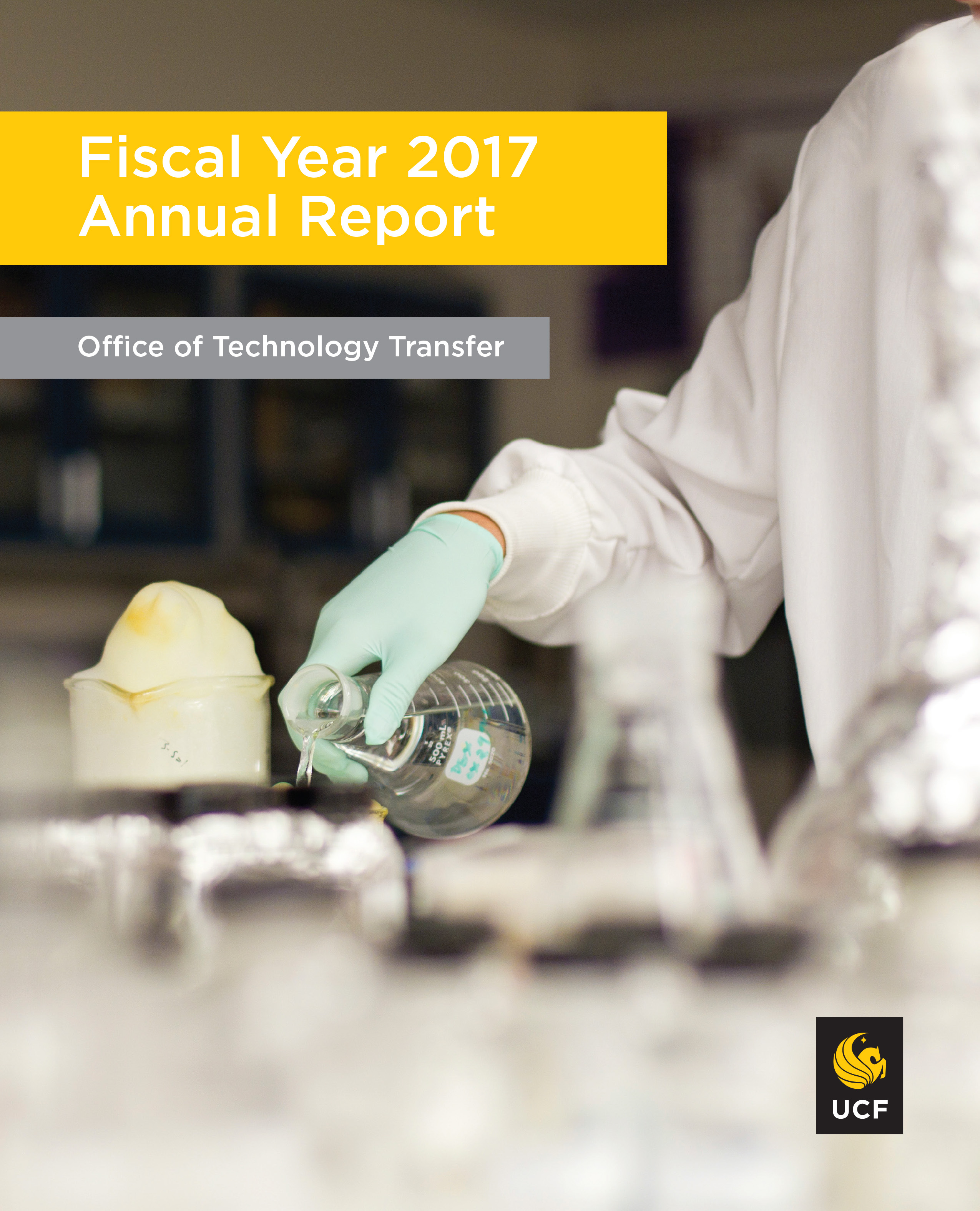 Fiscal year 17 annual report cover
