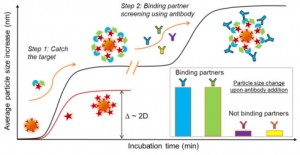 NanoDLSay_protein complex detection